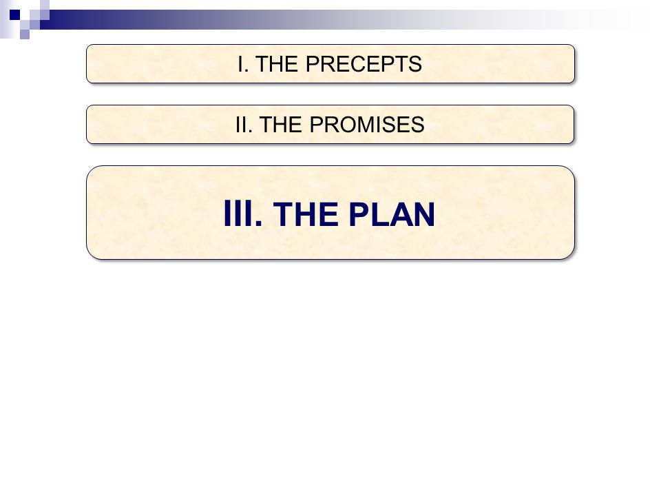 I. THE PRECEPTS III. THE PLAN II. THE PROMISES