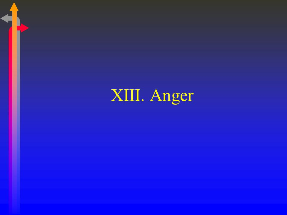 XIII. Anger