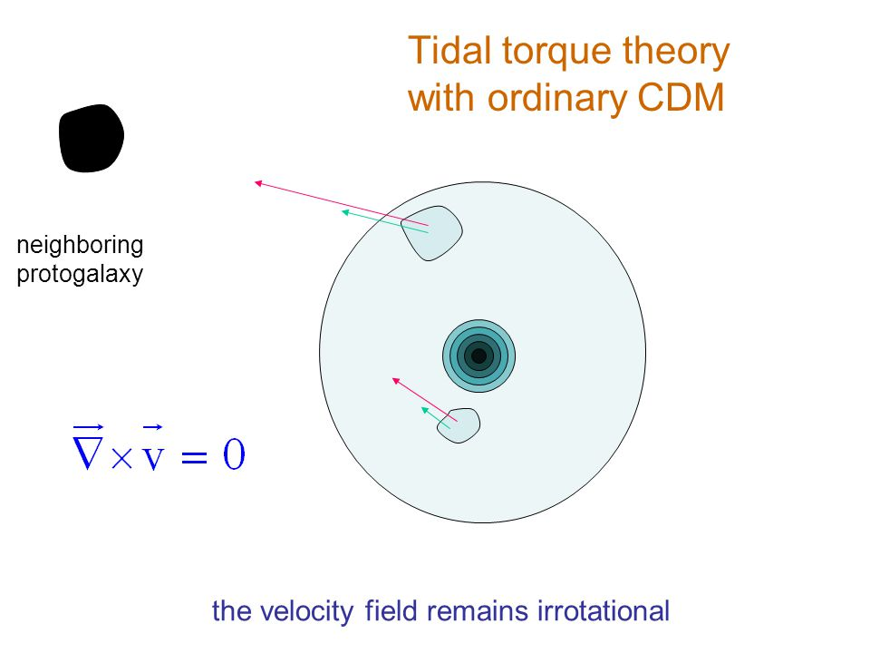 Tidal torque theory with ordinary CDM neighboring protogalaxy the velocity field remains irrotational