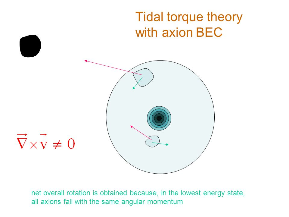 Tidal torque theory with axion BEC net overall rotation is obtained because, in the lowest energy state, all axions fall with the same angular momentum