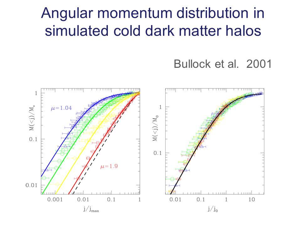 Angular momentum distribution in simulated cold dark matter halos Bullock et al. 2001