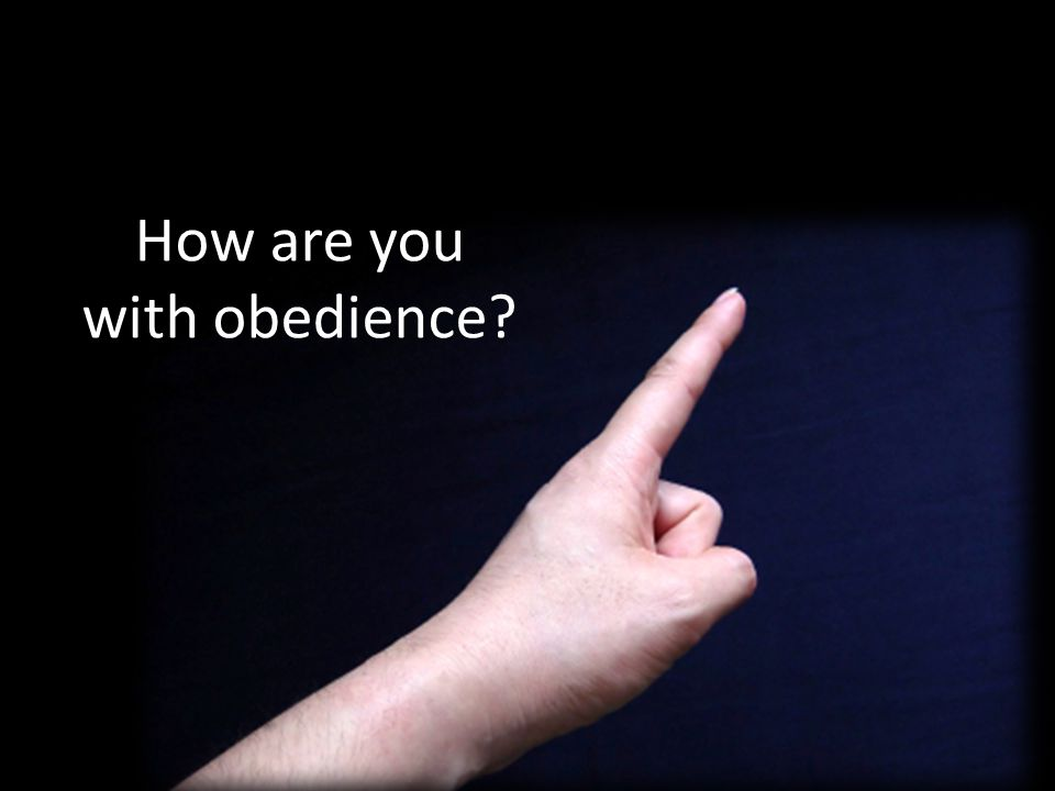 How are you with obedience?