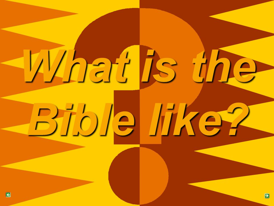 What is the Bible like