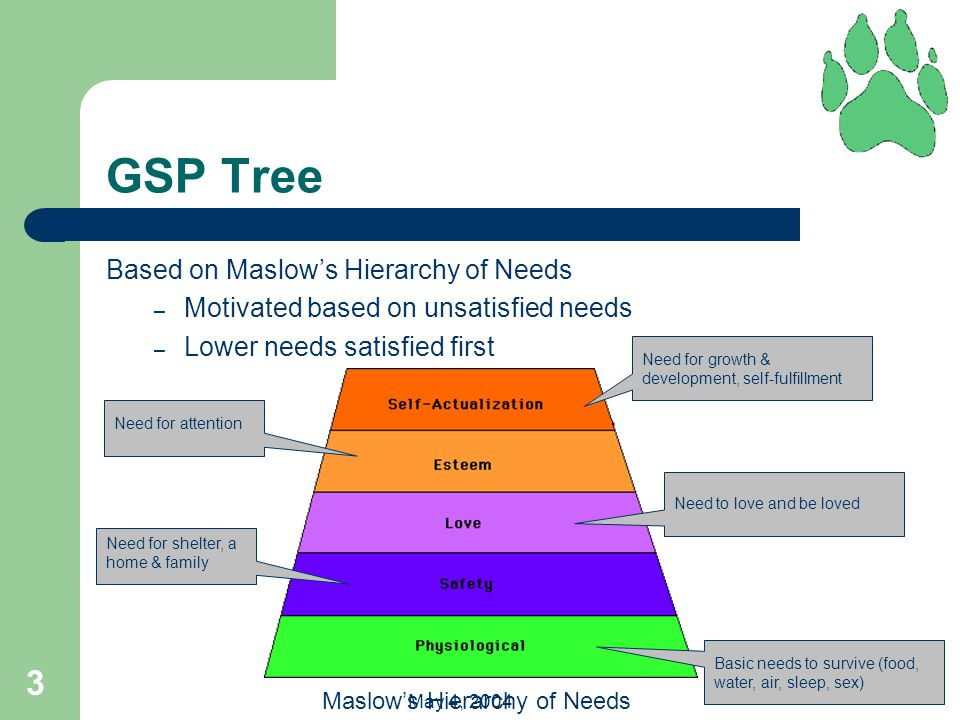 3 May 4, 2004 GSP Tree Based on Maslow's Hierarchy of Needs – Motivated based on unsatisfied needs – Lower needs satisfied first Maslow's Hierarchy of