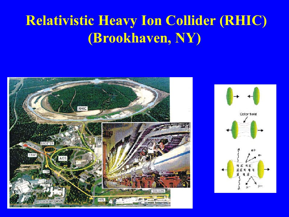 Relativistic Heavy Ion Collider (RHIC) (Brookhaven, NY)