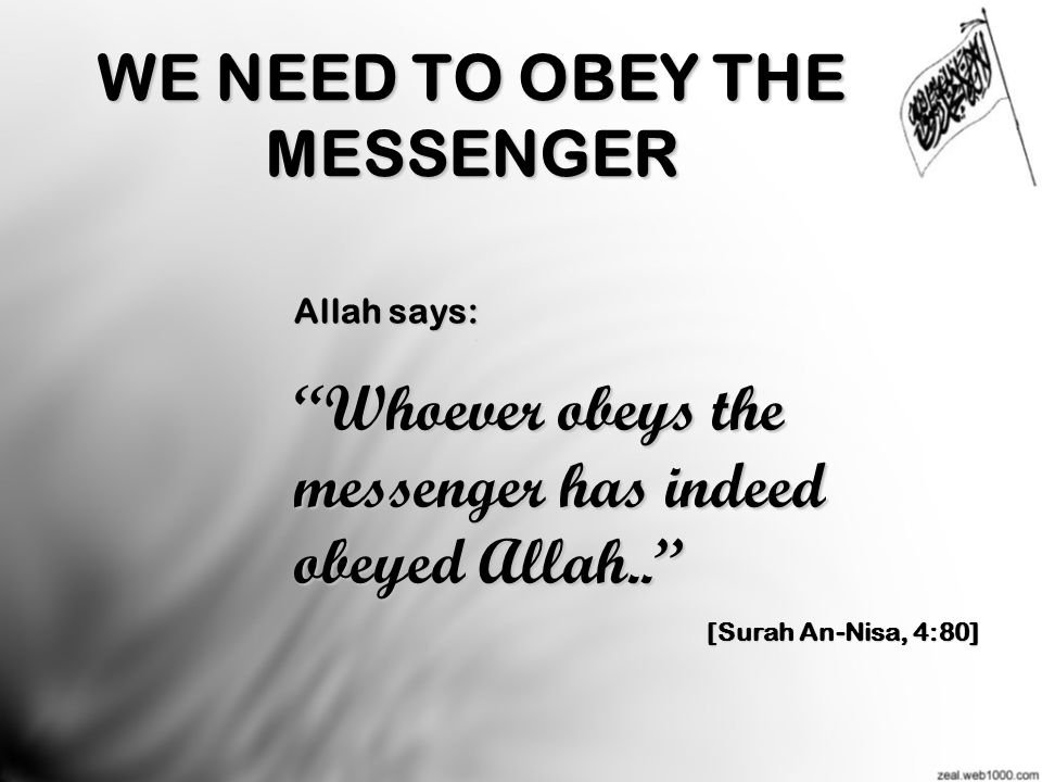 WE NEED TO OBEY THE MESSENGER Allah says: Whoever obeys the messenger has indeed obeyed Allah.. [Surah An-Nisa, 4:80]