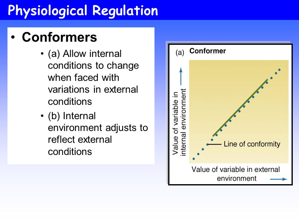 Moyes and Schulte; Figure 1.4 Physiological Regulation