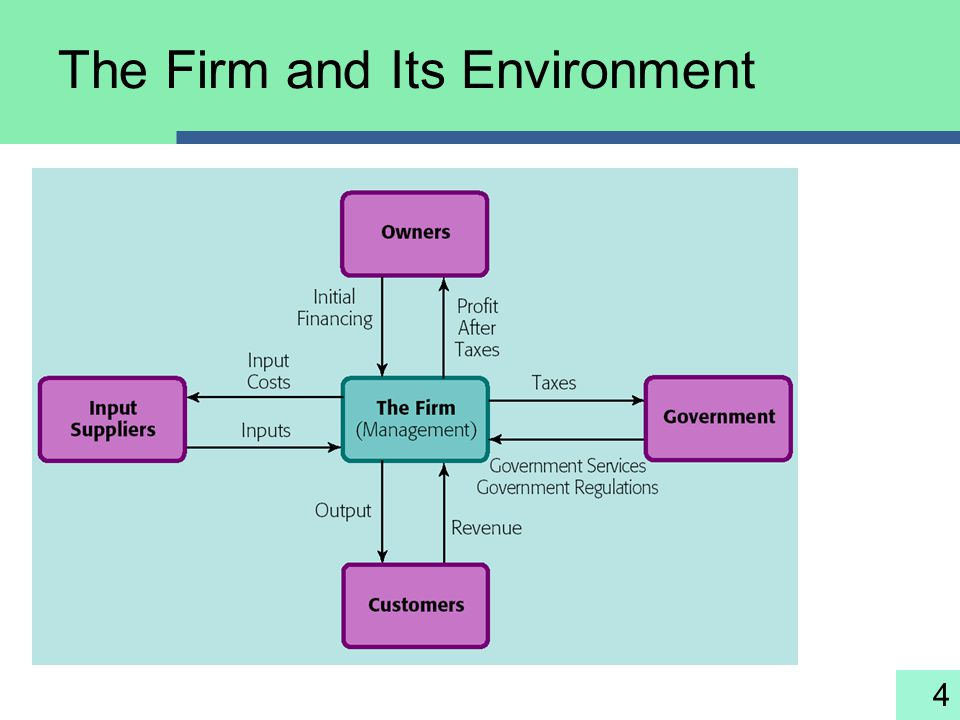 4 The Firm and Its Environment