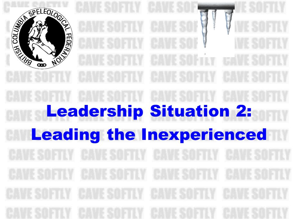 Leadership Situation 2: Leading the Inexperienced