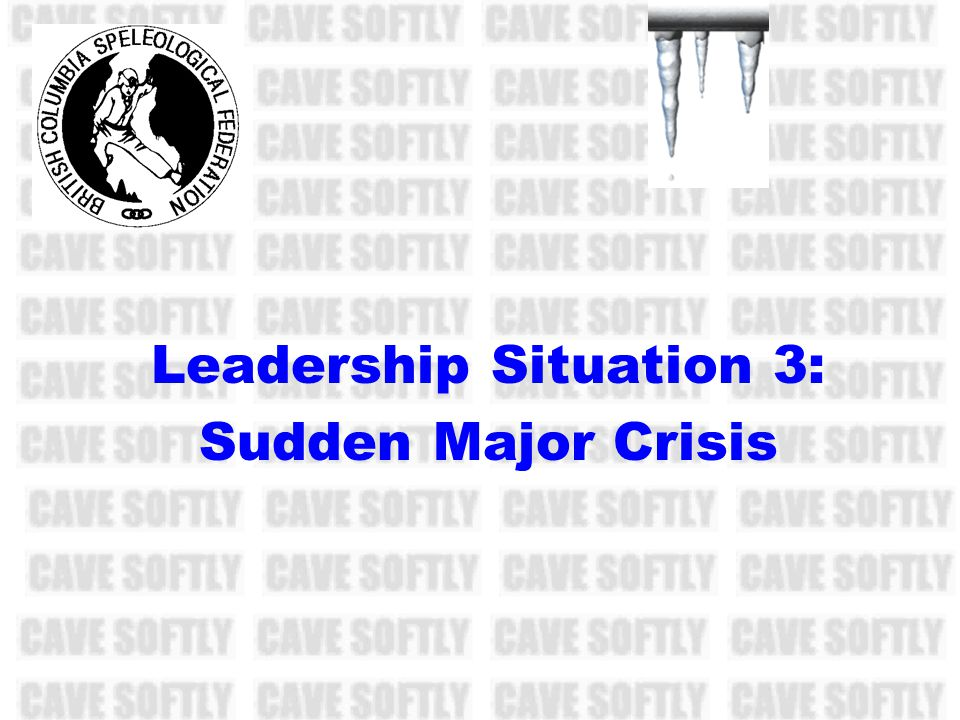 Leadership Situation 3: Sudden Major Crisis