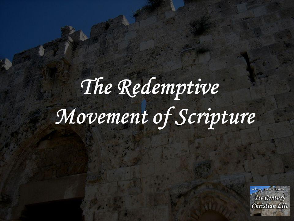 Canonical Development Inheritance Laws: Num.27:1-11; 36:1-13 Refuge for Slaves: Deut.