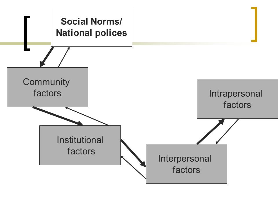 Social Norms/ National polices Community factors Intrapersonal factors Institutional factors Interpersonal factors