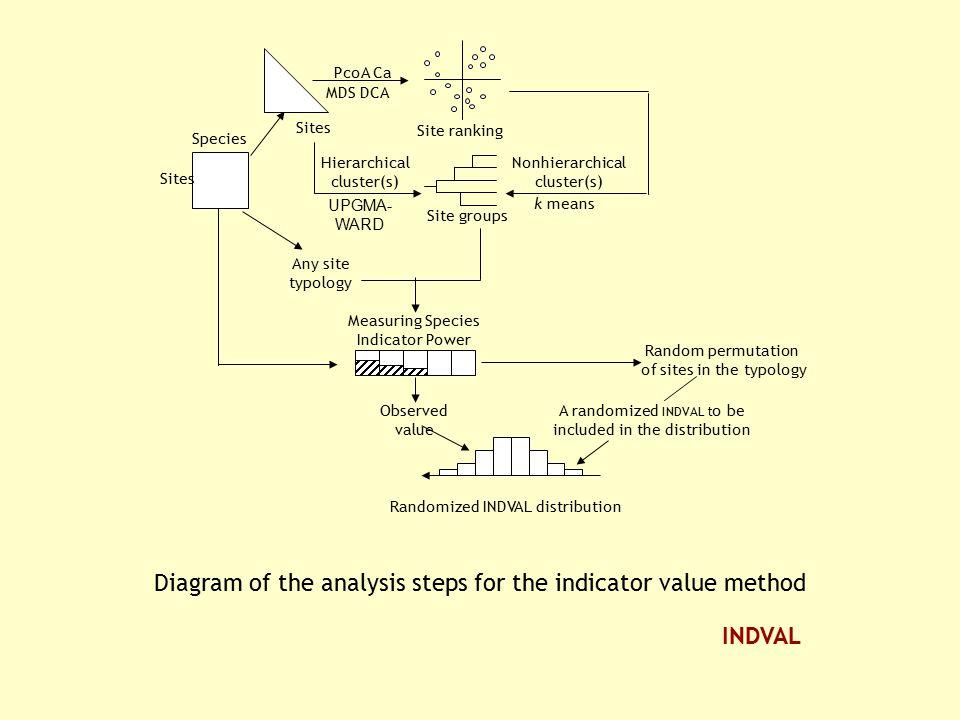 Diagram of the analysis steps for the indicator value method UPGMA- WARD Site groups Site ranking MDS DCA PcoA Ca Hierarchical cluster(s) Nonhierarchi