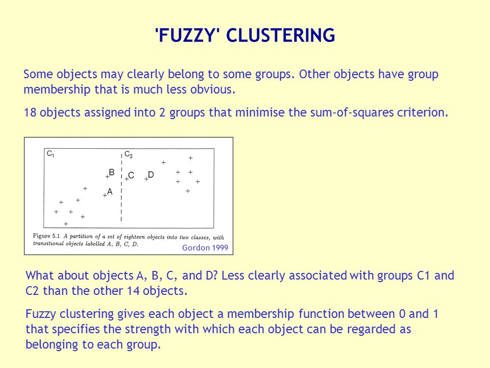 'FUZZY' CLUSTERING Some objects may clearly belong to some groups. Other objects have group membership that is much less obvious. 18 objects assigned