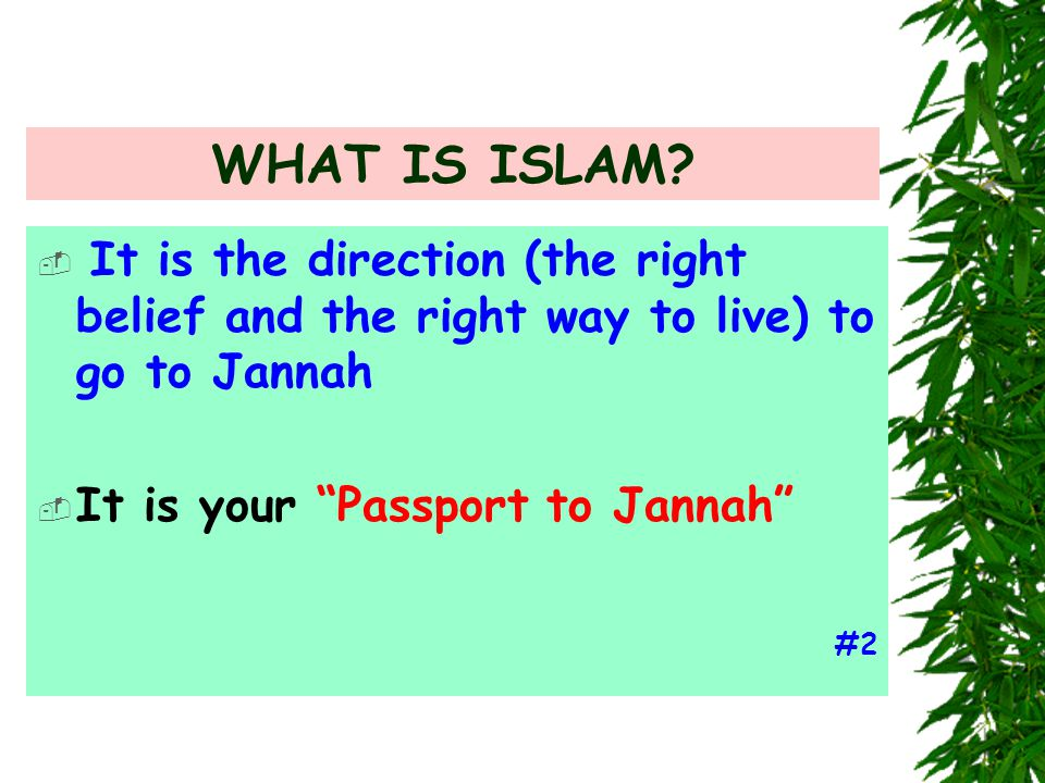 "WHAT IS ISLAM?  It is the direction (the right belief and the right way to live) to go to Jannah  It is your ""Passport to Jannah"" #2"