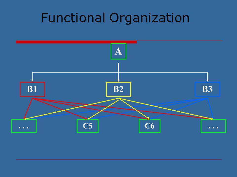 Functional Organization A B1B2B3 C5C6...