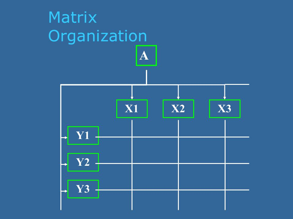 Matrix Organization A X1X2X3 Y1 Y2 Y3