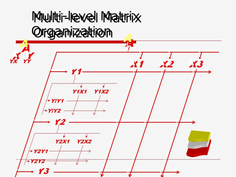 Multi-level Matrix Organization A A Y1 Y2 Y3 X1 X2 X3 Y1X1Y1X2 Y!Y1 Y!Y2 Y2X1Y2X2 Y2Y1 Y2Y2 A A X Y YX YY