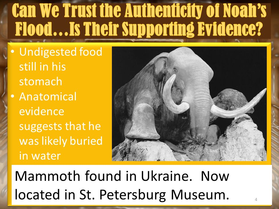 Undigested food still in his stomach Anatomical evidence suggests that he was likely buried in water Undigested food still in his stomach Anatomical evidence suggests that he was likely buried in water Mammoth found in Ukraine.