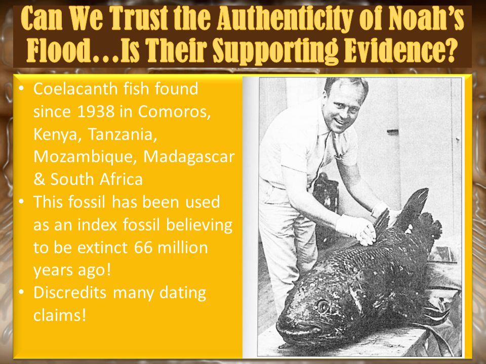 Coelacanth fish found since 1938 in Comoros, Kenya, Tanzania, Mozambique, Madagascar & South Africa This fossil has been used as an index fossil belie