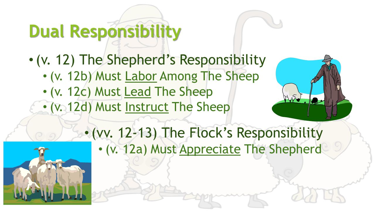 Dual Responsibility (v. 12) The Shepherd's Responsibility (v. 12b) Must Labor Among The Sheep (v. 12c) Must Lead The Sheep (v. 12d) Must Instruct The