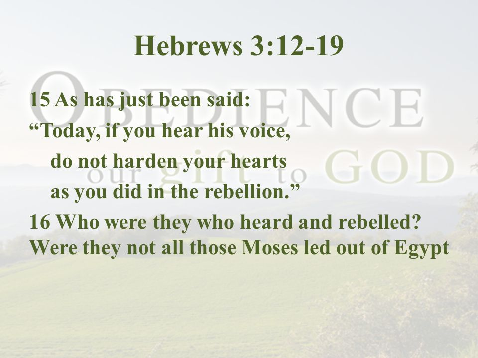 Hebrews 3:12-19 15 As has just been said: Today, if you hear his voice, do not harden your hearts as you did in the rebellion. 16 Who were they who heard and rebelled.