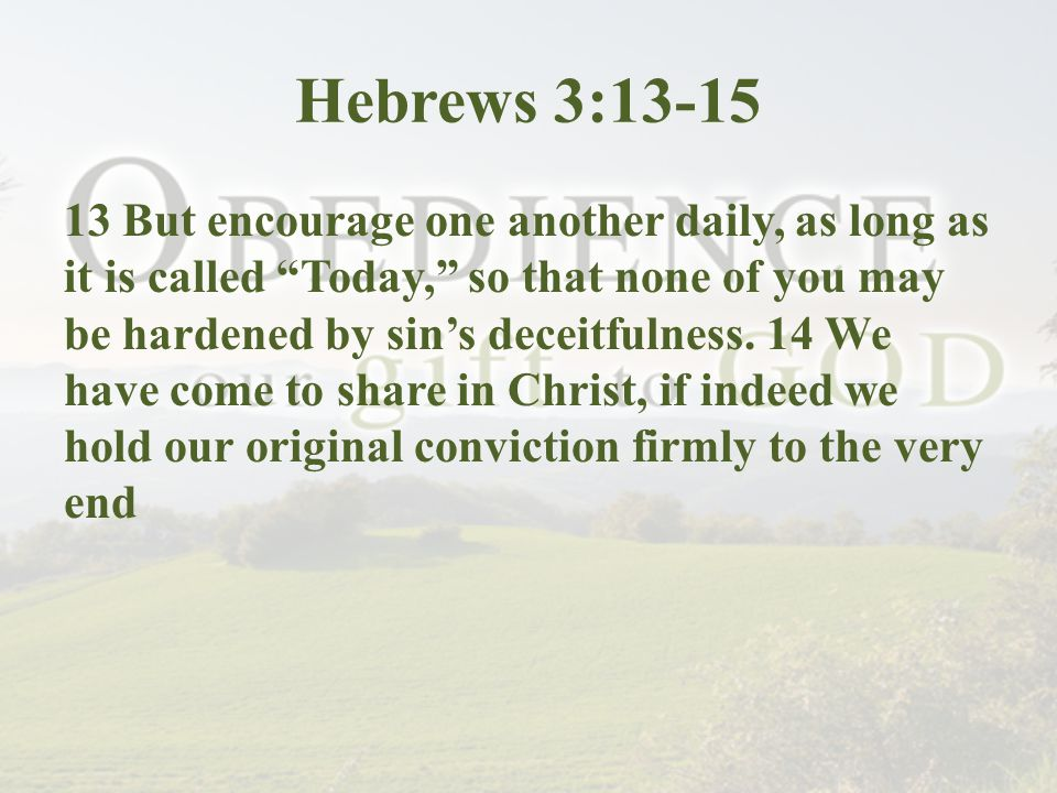 Hebrews 3:13-15 13 But encourage one another daily, as long as it is called Today, so that none of you may be hardened by sin's deceitfulness.