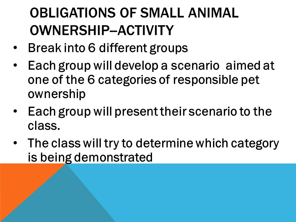 OBLIGATIONS OF SMALL ANIMAL OWNERSHIP--ACTIVITY Break into 6 different groups Each group will develop a scenario aimed at one of the 6 categories of r