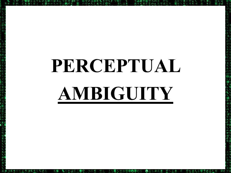 PERCEPTUAL AMBIGUITY