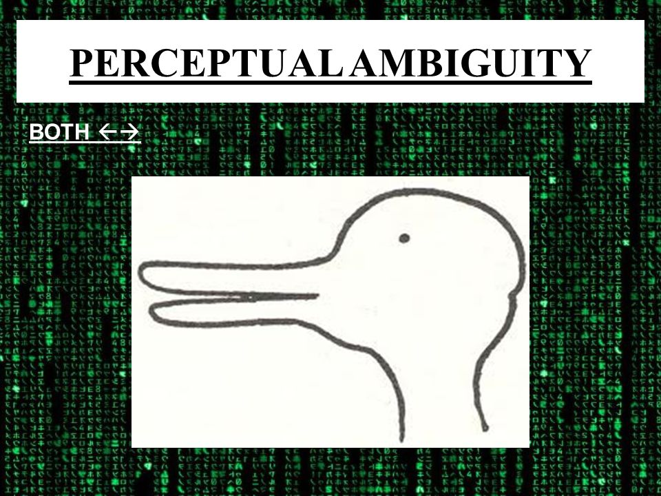 PERCEPTUAL AMBIGUITY BOTH 