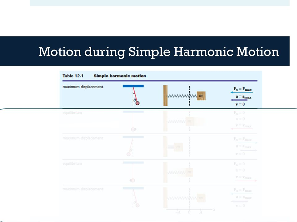 Motion during Simple Harmonic Motion