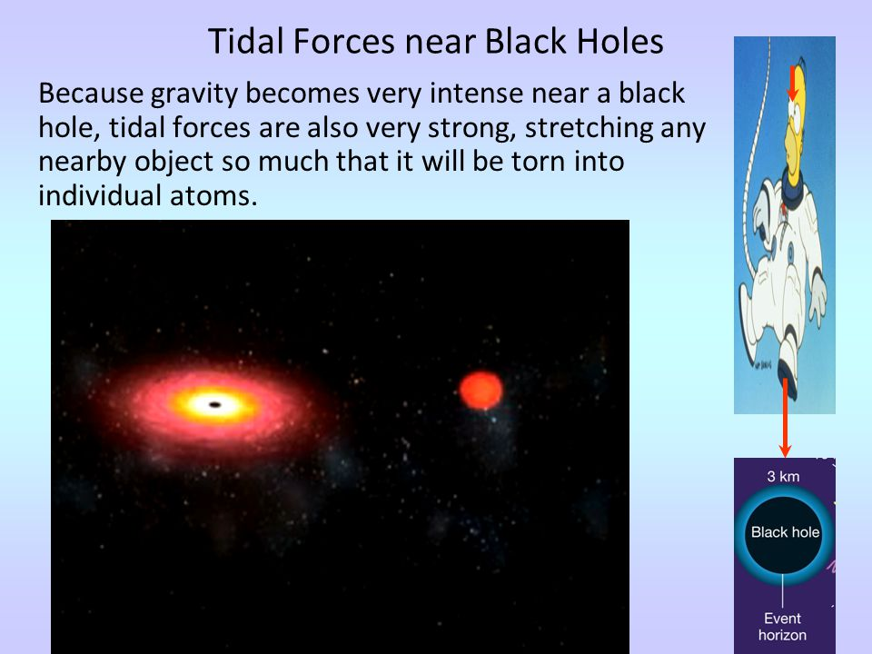 Making Black Holes Anything can become a black hole if it is compressed enough.