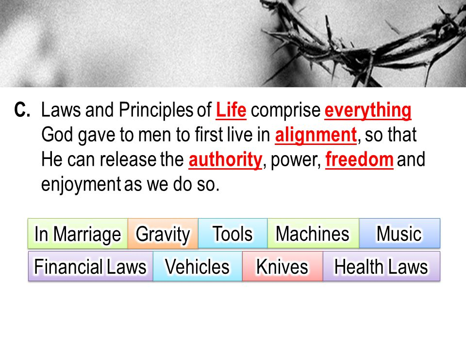 C. Laws and Principles of Life comprise everything God gave to men to first live in alignment, so that He can release the authority, power, freedom an