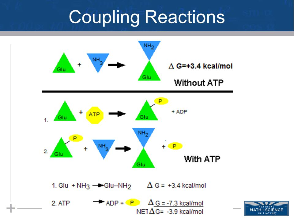 Coupling Reactions 17