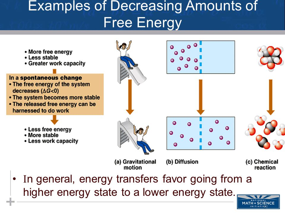 Examples of Decreasing Amounts of Free Energy  n general, energy transfers favor going from a higher energy state to a lower energy state. 27