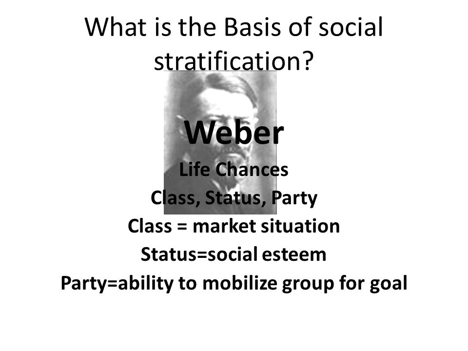What is the Basis of social stratification.