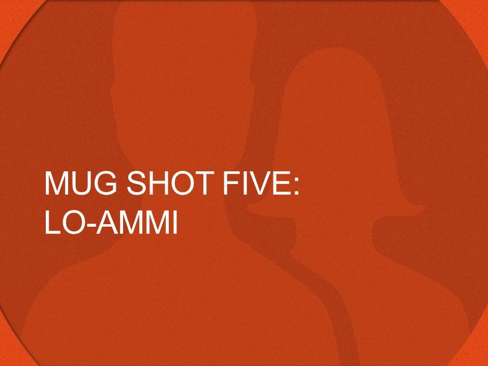 MUG SHOT FIVE: LO-AMMI