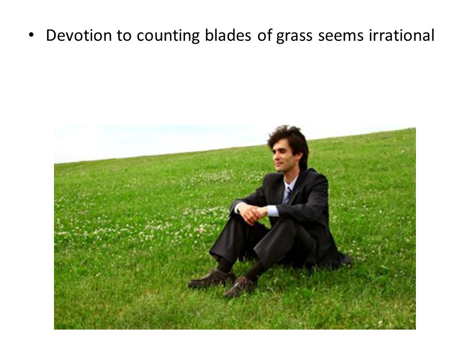 Devotion to counting blades of grass seems irrational