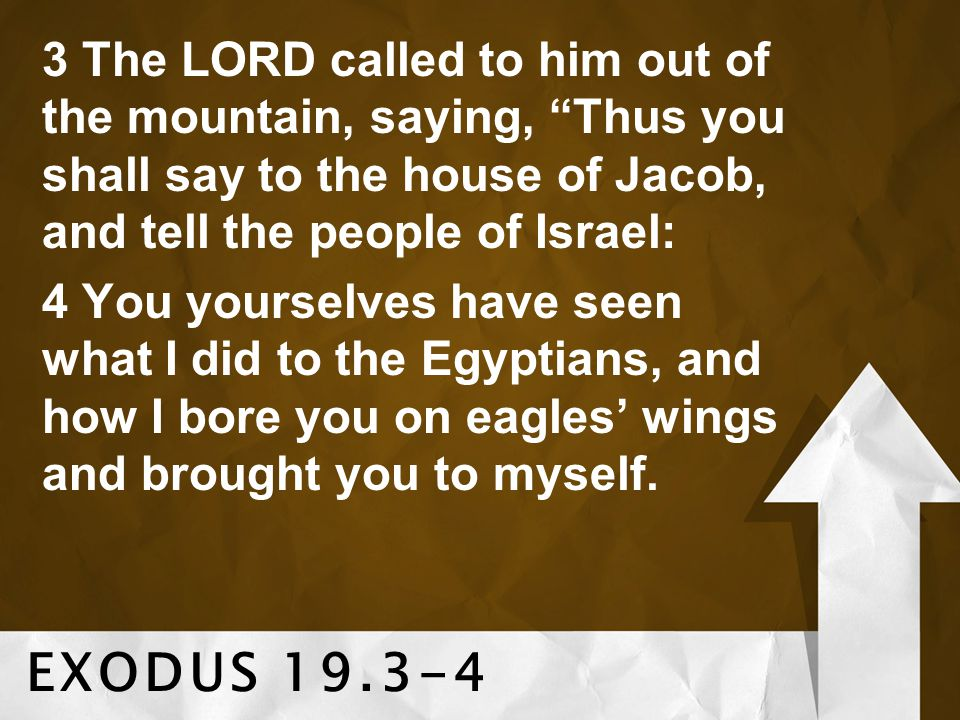 3 The LORD called to him out of the mountain, saying, Thus you shall say to the house of Jacob, and tell the people of Israel: 4 You yourselves have seen what I did to the Egyptians, and how I bore you on eagles' wings and brought you to myself.