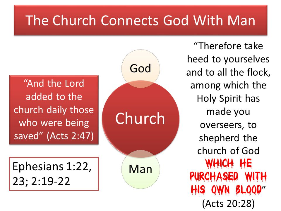 The Church Connects God With Man Church GodMan And the Lord added to the church daily those who were being saved (Acts 2:47) Therefore take heed to yourselves and to all the flock, among which the Holy Spirit has made you overseers, to shepherd the church of God which He purchased with His own blood (Acts 20:28) Ephesians 1:22, 23; 2:19-22