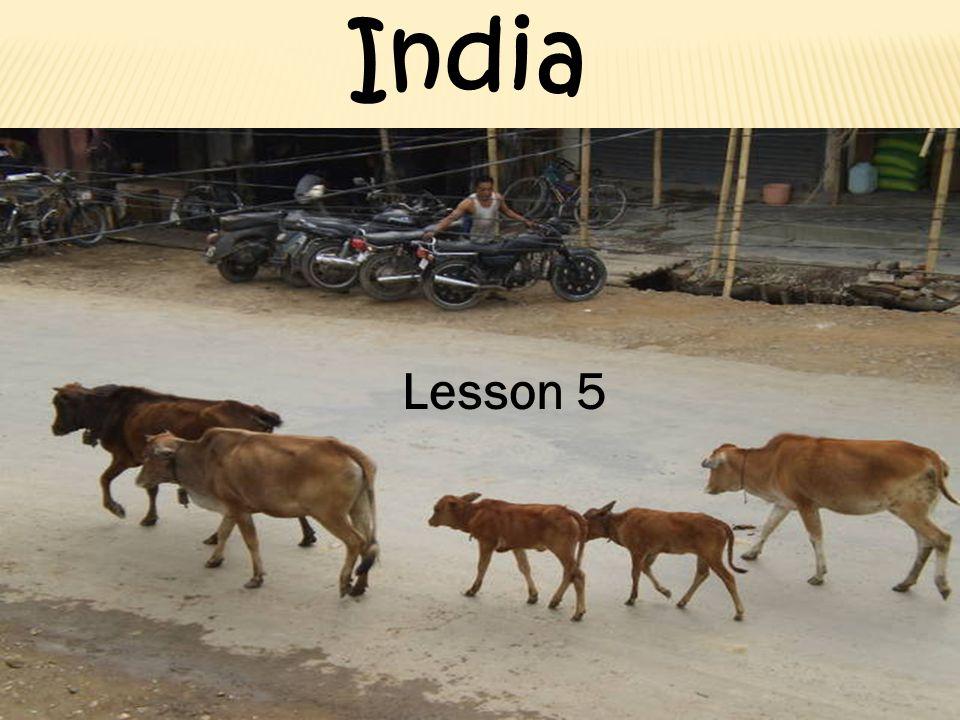 Lesson 5 India