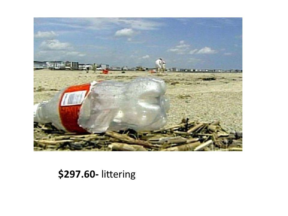 $297.60- littering