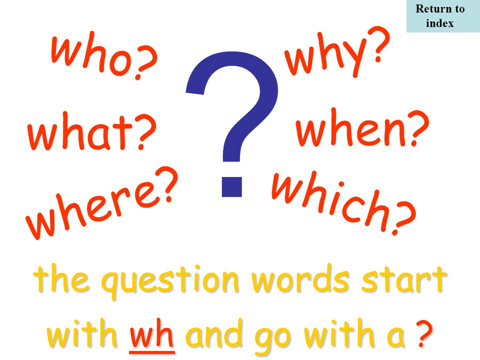 what. the question words start with wh and go with a .