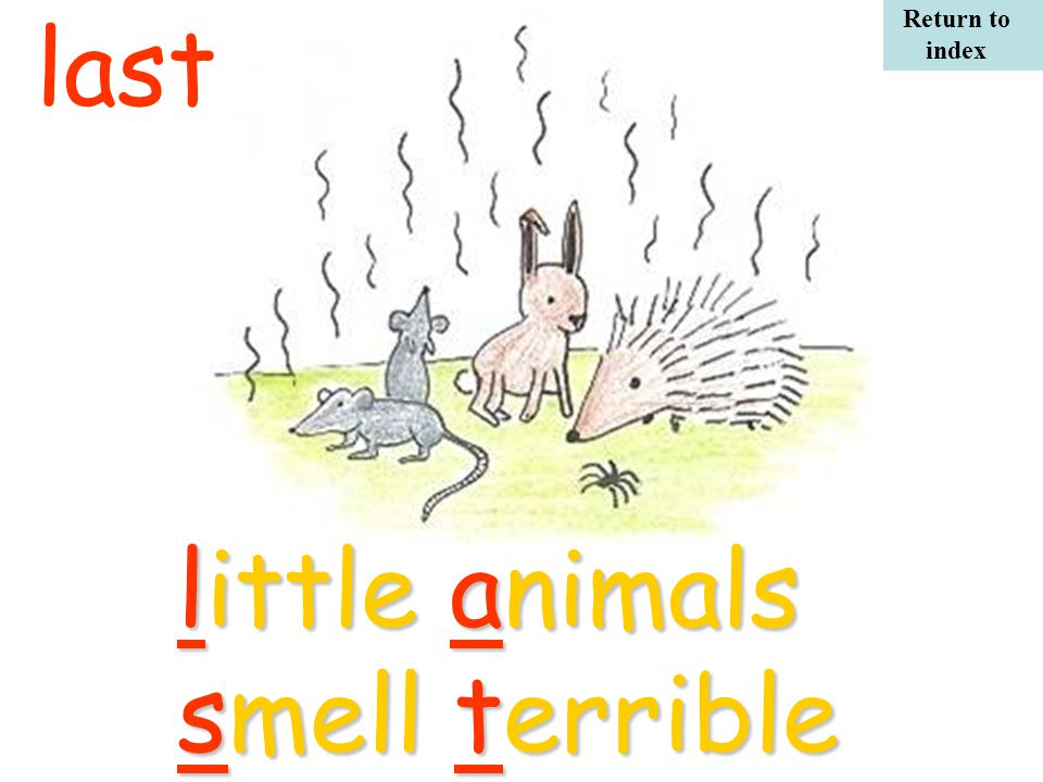 little animals smell terrible last Return to index