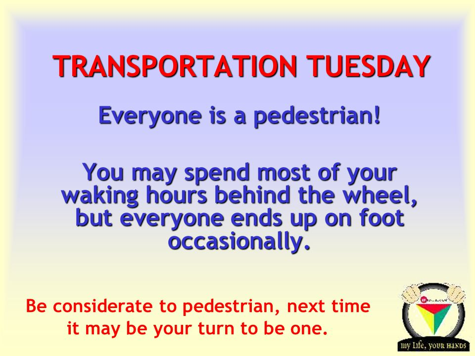 Transportation Tuesday TRANSPORTATION TUESDAY Everyone is a pedestrian! You may spend most of your waking hours behind the wheel, but everyone ends up