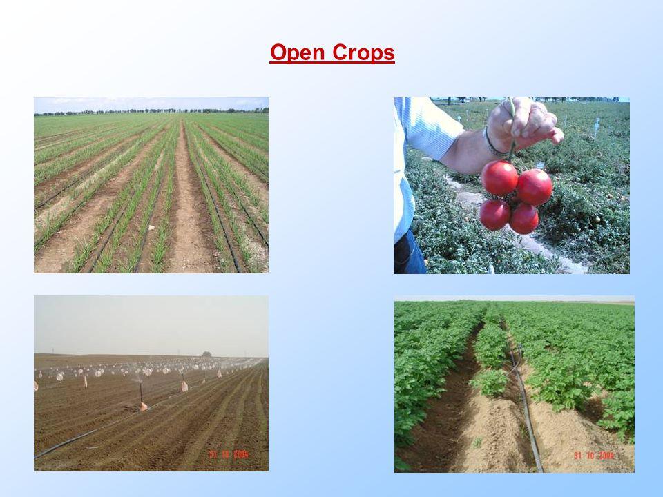 Open Crops