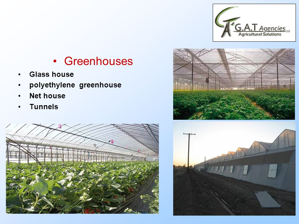 Greenhouses Glass house polyethylene greenhouse Net house Tunnels