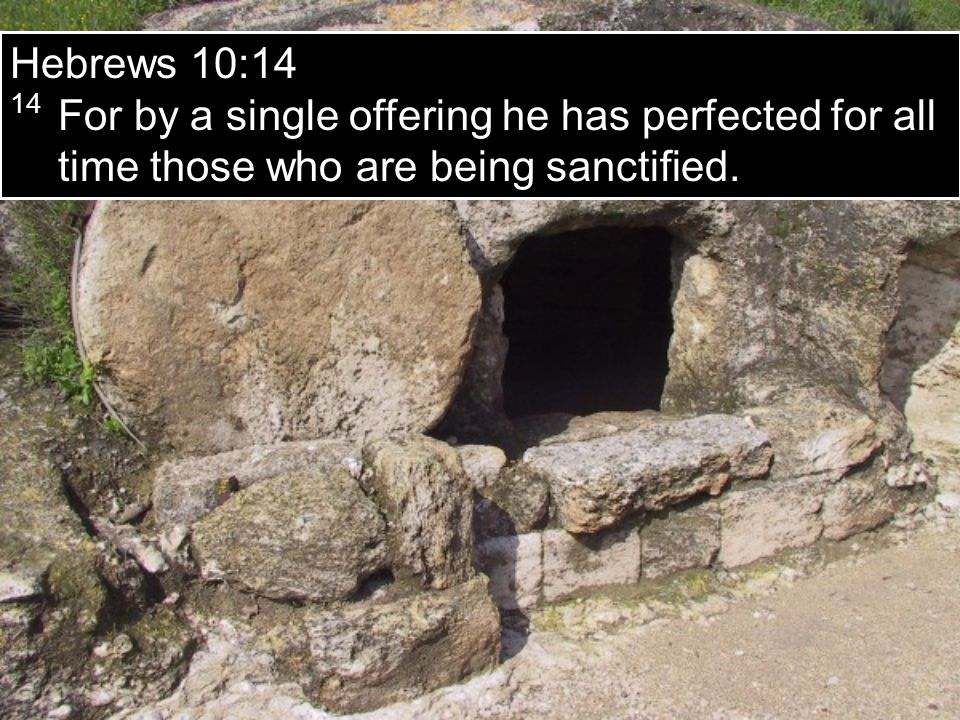 Hebrews 10:14 14 For by a single offering he has perfected for all time those who are being sanctified.