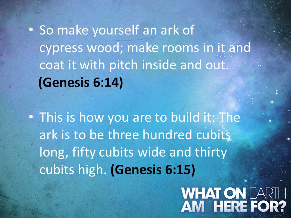 So make yourself an ark of cypress wood; make rooms in it and coat it with pitch inside and out. (Genesis 6:14) This is how you are to build it: The a