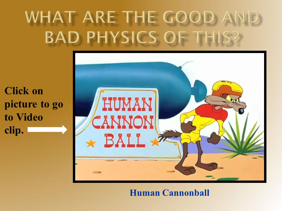 Click on picture to go to Video clip. Human Cannonball